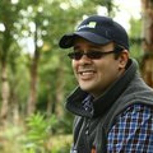 Stf31's avatar