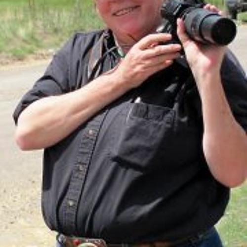 Anne Schmitt's avatar