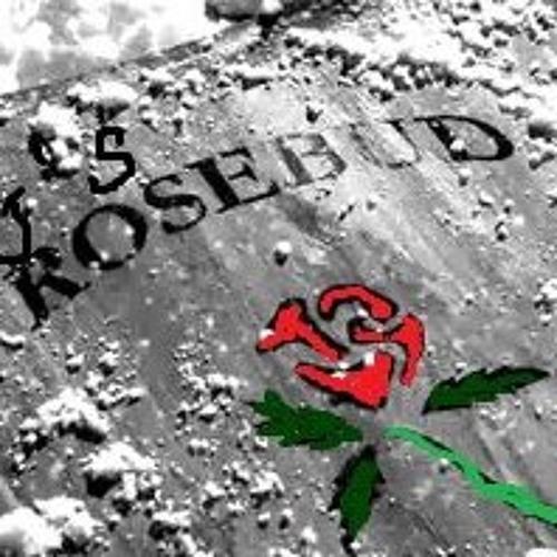 Djs_RoseBud's avatar