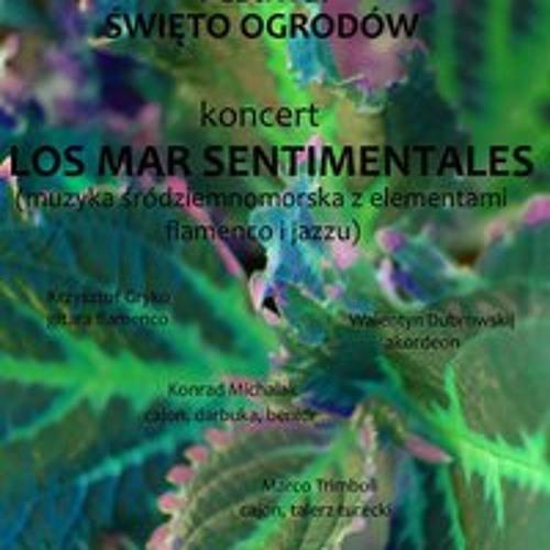 losmarsentimentales's avatar
