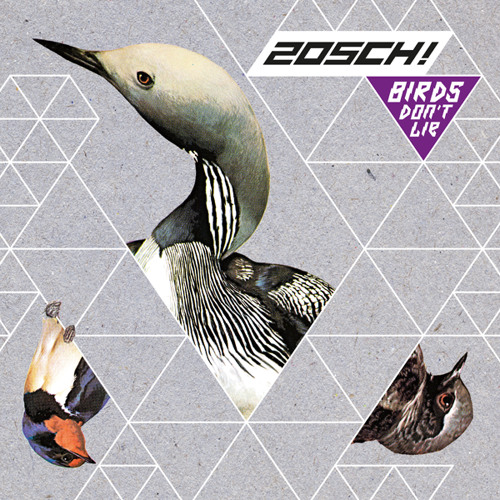 zOSCH!'s avatar