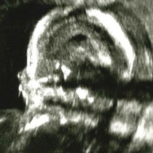 John Wolf's avatar