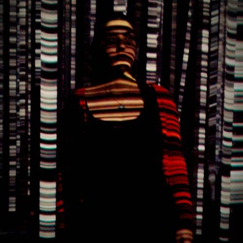 Gülîstan Naweste's avatar