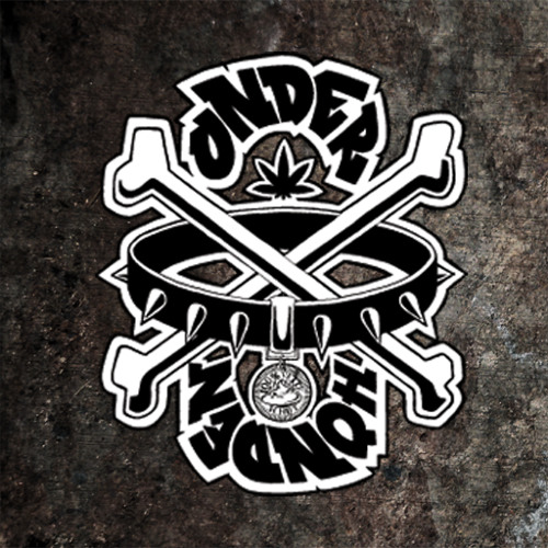 DeOnderhonden's avatar