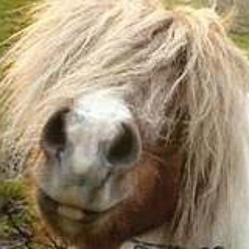 A Pony Named Olga's avatar