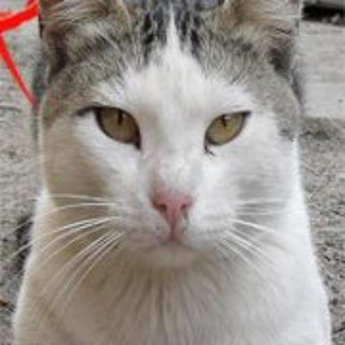 Spook Nefez's avatar