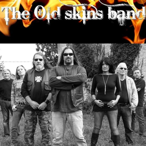 THE OLD SKINS BAND's avatar