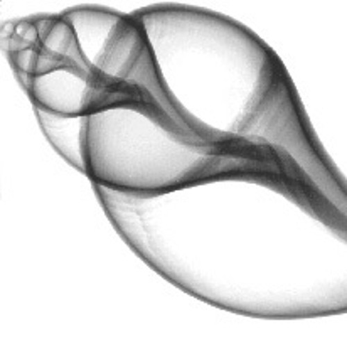 Kamerkoor Kwintessens's avatar