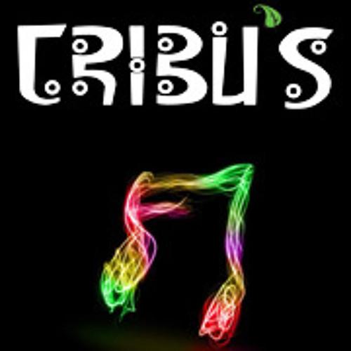 revistatribus's avatar