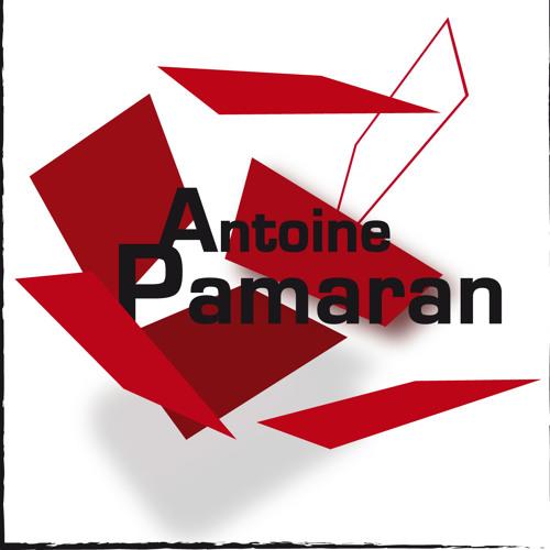 Antoine PAMARAN's avatar