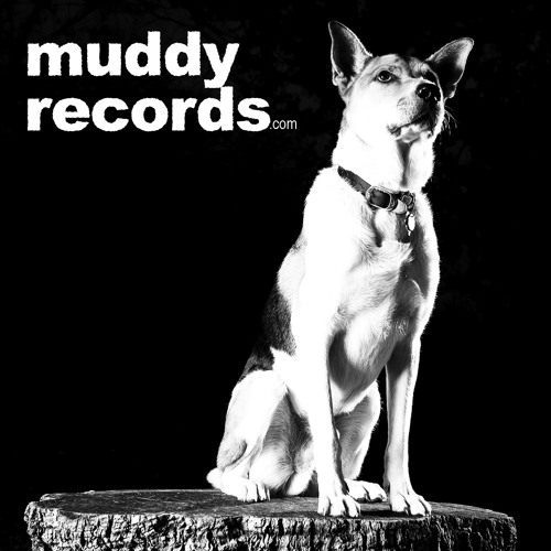 Muddy Records's avatar