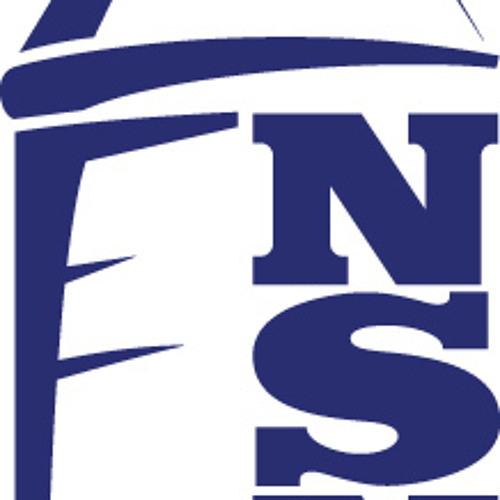 The NSNO Everton Podcast's avatar