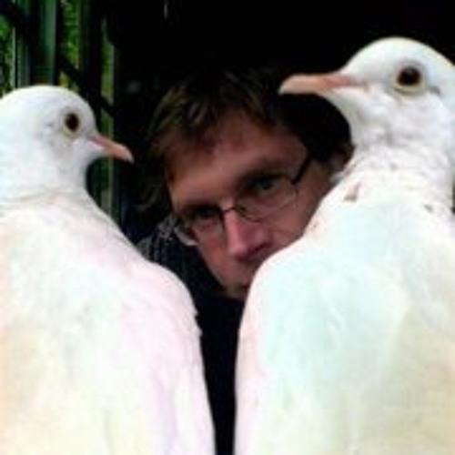 Robertino Dolk's avatar