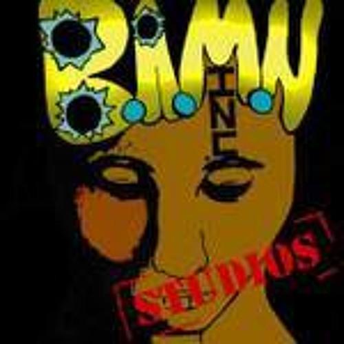 B.A.M.N. INC.'s avatar
