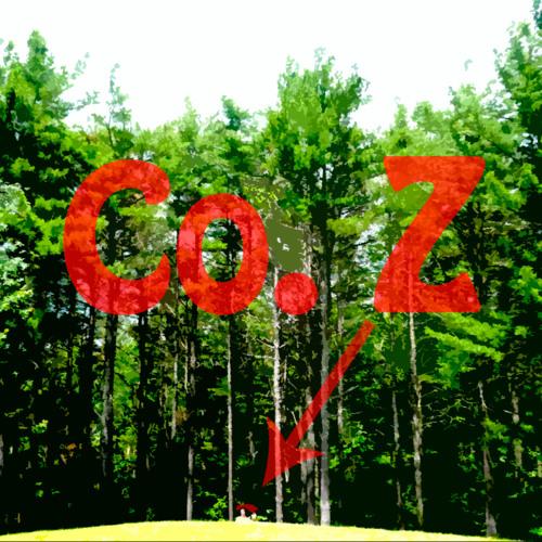 CompanyZ's avatar