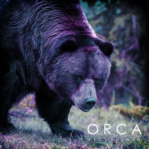 orca.recordings's avatar