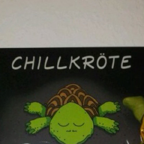 *Chillkröte*'s avatar