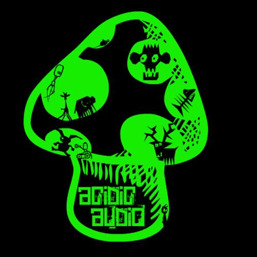 Acidic Audio's avatar