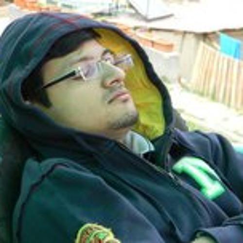 Nitish Vashishtha's avatar