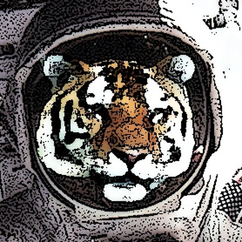Captain Space Tiger's avatar