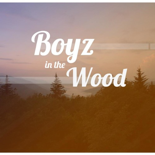 Boyz in the wood's avatar