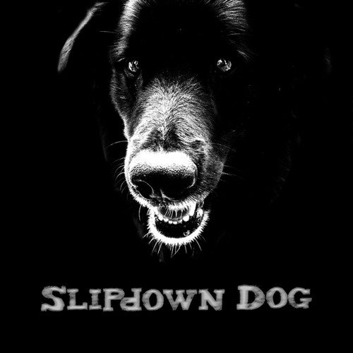 Slipdown Dog's avatar