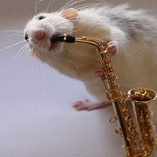 jazzdienst's avatar
