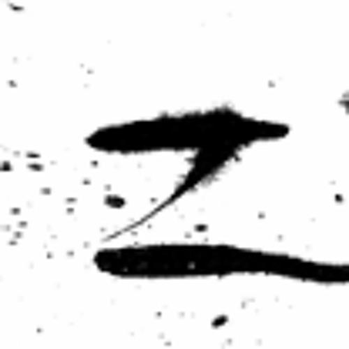 zenzero mc's avatar