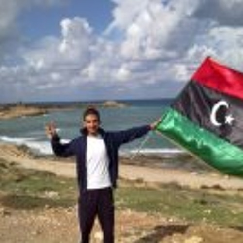 Hassan Alsewid's avatar