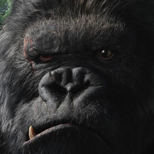danimor60's avatar