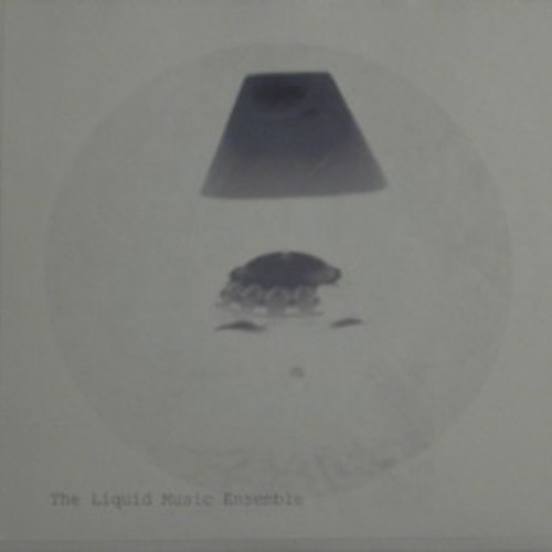 liquidmusicensemble's avatar