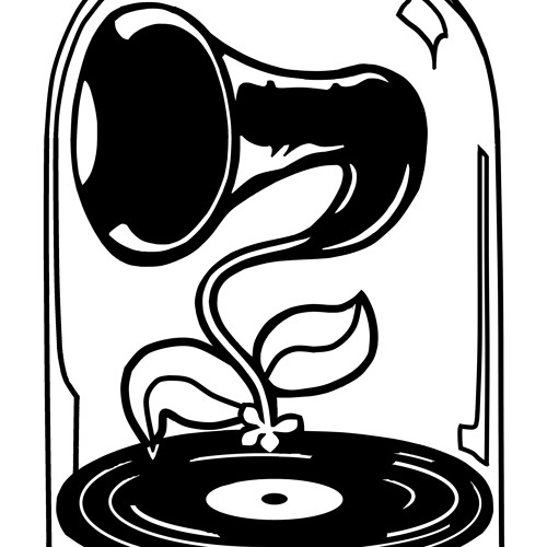 Rare-Fi Records's avatar