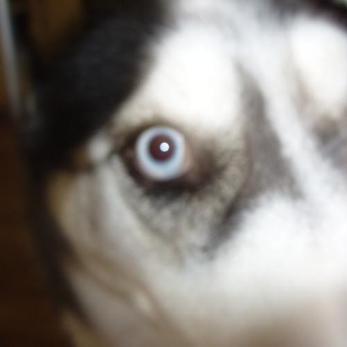 Lamb0fBob's avatar