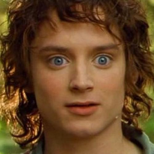 Frodo Bolsón's avatar