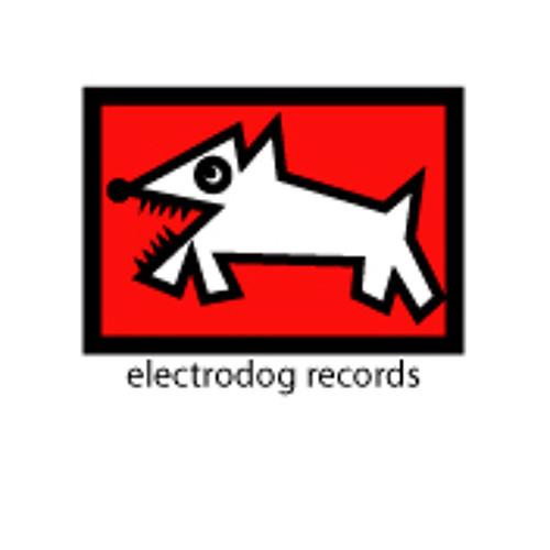 ELECTRODOGRECORDS's avatar
