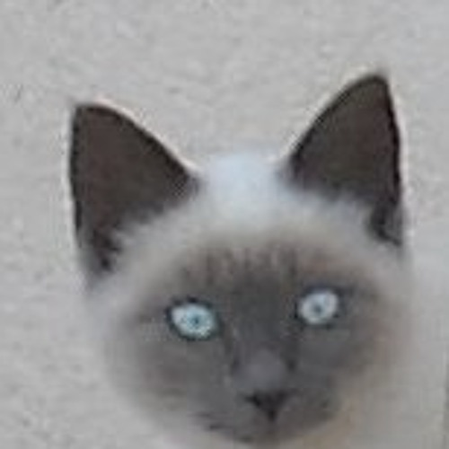 Jim0u's avatar