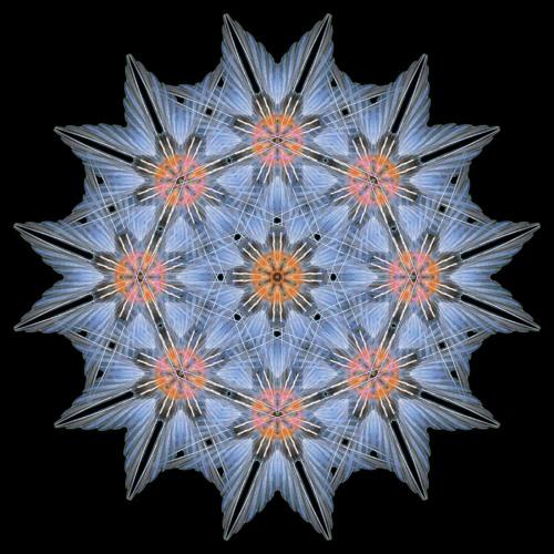 Atomic Mandala's avatar