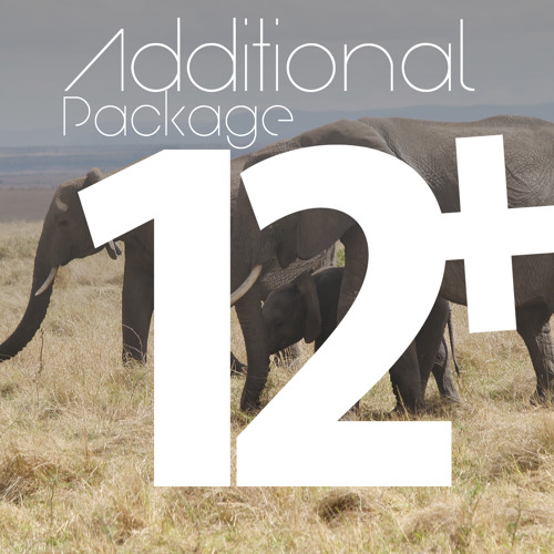 AdditionalPackage12's avatar