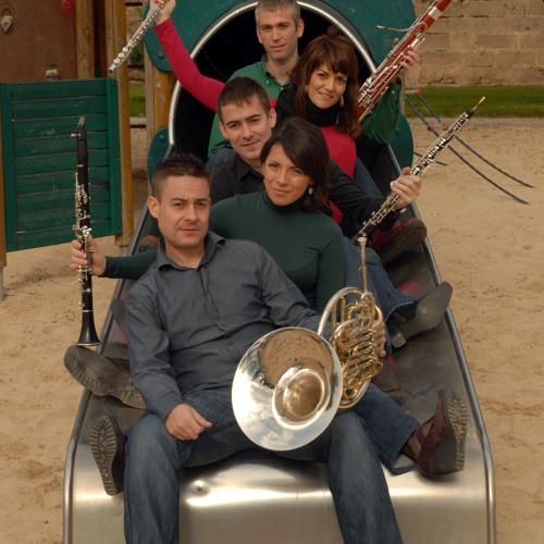 Quintet Lluís Vives's avatar