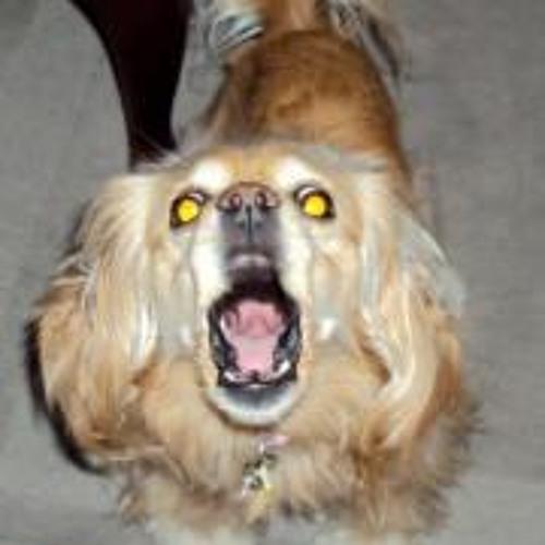 Camdenkidd's avatar