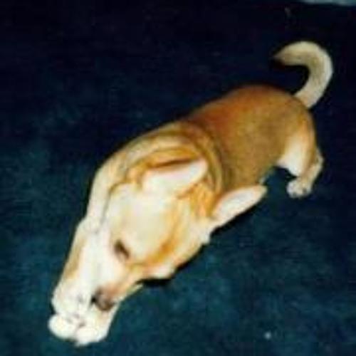 Ruth Violeta Barcenas's avatar