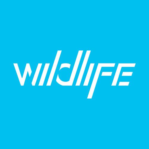 wildlifela's avatar