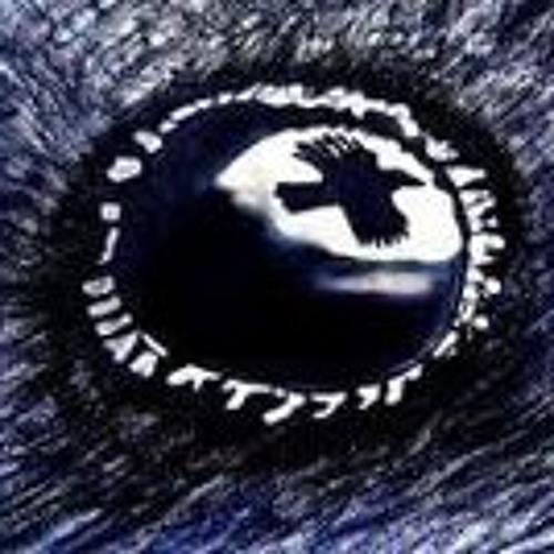 Little Raven 1's avatar