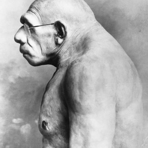 Samuel von Gnegg's avatar