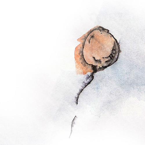 Mood Records's avatar