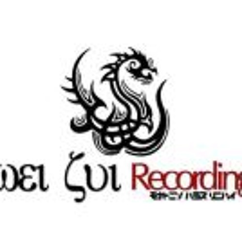 Wei Zui Recordings's avatar