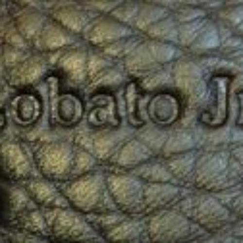 Lobato jr's avatar