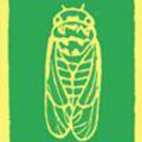 OzkanOzyakan's avatar