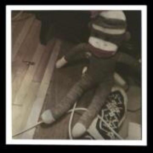 International Sock Monkey's avatar