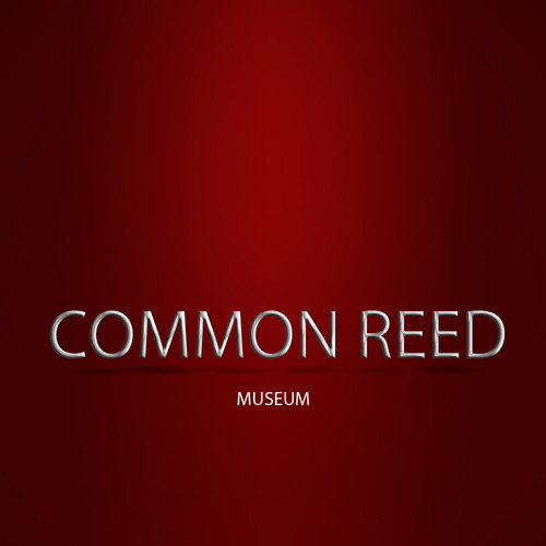 Common  Reed's avatar
